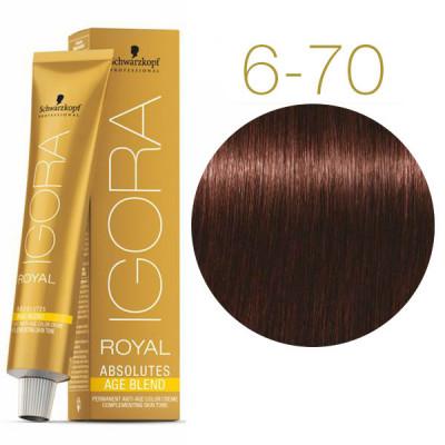 Крем-краска для седых волос Schwarzkopf Professional Igora Royal Absolutes Age Blend 6-70 Темный русый медный натуральный 60 мл: фото