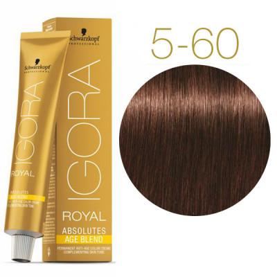 Крем-краска для седых волос Schwarzkopf Professional Igora Royal Absolutes Age Blend 5-60 Светлый коричневый шоколадный натуральный 60 мл: фото